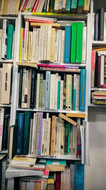 mona lisait bookshelf